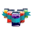 Canned Sweet Fruit Jam Composition with Ribbon vector image