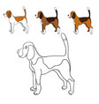 cute cartoon contour beagle isolated on white vector image vector image