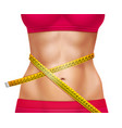 female athletic waistline 3d vector image vector image