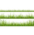 green grass horizontal borders lawn shape meadow vector image vector image