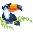 little toucan cute cartoon character vector image