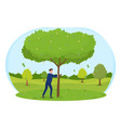man shaking tree to shake off money to fall vector image