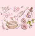 Rose natural cosmetic set vector image