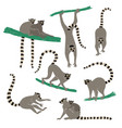 set funny lemur icons vector image