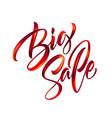 black friday handwritten lettering paint brush vector image vector image