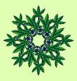 cannabis leaf marijuana mandala vector image vector image