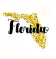 Golden glitter of the state of Florida vector image vector image