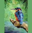 kingfisher low poly vector image vector image