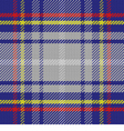 seamless pattern Scottish tartan State of Florida vector image vector image