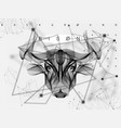 abstract animal poster bull vector image vector image