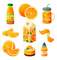 food from orange fruit drinks and sweet products vector image