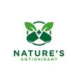 modern herbal medicine logo vector image vector image