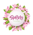 spring lettering blossoming tree brunch vector image