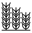 wheat icon outline style vector image