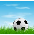 ball on grass vector image vector image