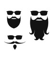 Beard vector image