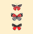 beautiful watercolor three red butterfly vector image