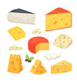 cheese types modern flat style realistic vector image vector image