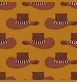 cowboy hat pattern australian cap background vector image vector image