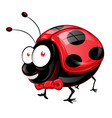 lady bug cartoon with bow tie isolated on white vector image