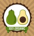 organic healthy food design vector image vector image
