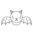 outline cute bat wild animal flying vector image