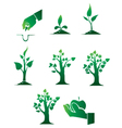 planting of trees vector image