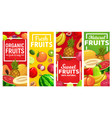 ripe fruits vertical banners vector image vector image