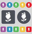 rose icon sign A set of 12 colored buttons Flat vector image