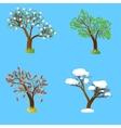 Four seasons tree vector image