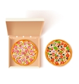 Pizza Box Composition vector image