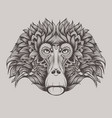 baboon monkey face doodle vector image