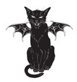 creepy black cat with monster wings isolated vector image vector image