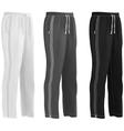 Sport sweatpants set vector image vector image