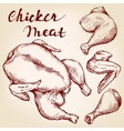 Chicken meat set hand drawn llustration vector image vector image