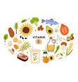 collection vitamin e sources balanced vector image