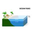 Ocean Tides vector image vector image
