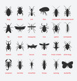 pest control insect black silhouette set vector image