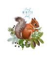 winter squirrel composition vector image vector image