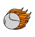 baseball ball equipment isolated icon vector image