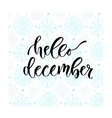 Hand drawn lettering Hello december vector image