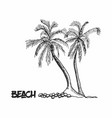 palm trees hand drawn outline sketch vector image