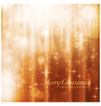 Sparkling lights and stars Christmas card vector image vector image