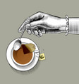 womans hand with a tea cup and spoon vector image vector image