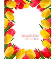 Colorful spring flower background vector image