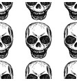 eamless pattern skull on white background vector image vector image