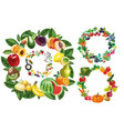 fruits vegetables food and berries frames vector image vector image