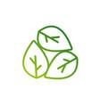 green leaf logo design template modern leaf logo vector image