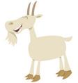 happy goat animal character vector image