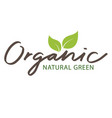 Organic natural green sapling white background vec vector image